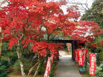 浅野公園.jpg